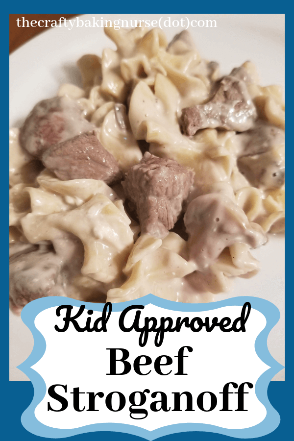 Kid approved beef stroganoff